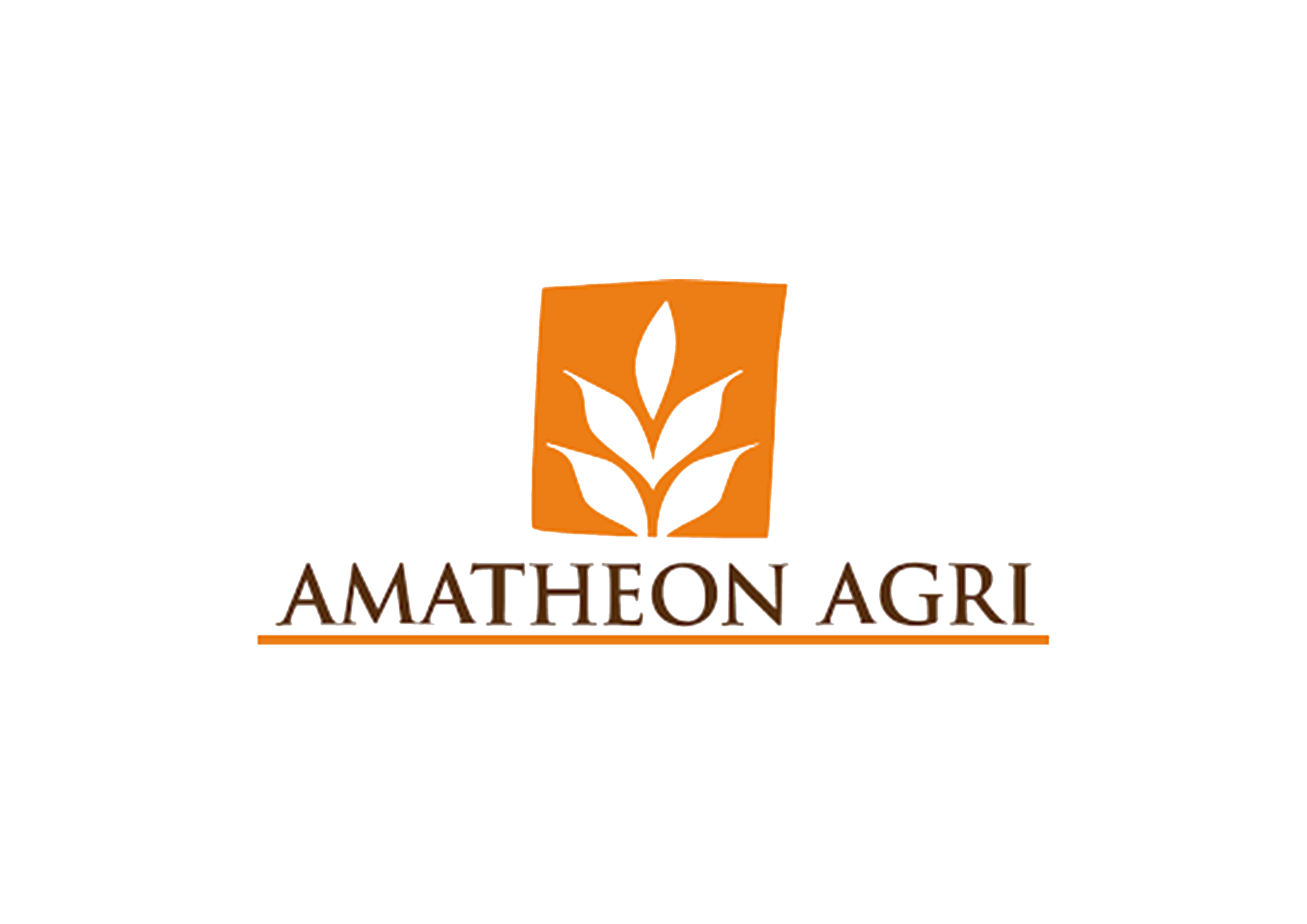 2 Amatheon
